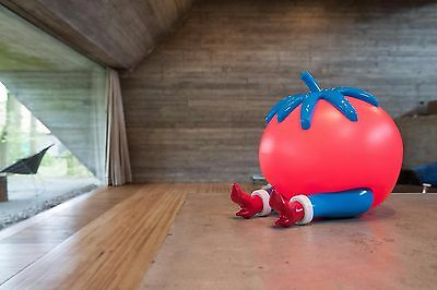 PIET PARRA 'GIVE UP' Tomato Lamp - Sculpture Case Studyo (not kaws coarse)