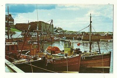 Seahouses - a photographic postcard of The Harbour