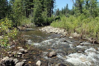 Gold Vault Placer 40 Acre Placer Gold Mining Claim Equipment Land Plumas CA