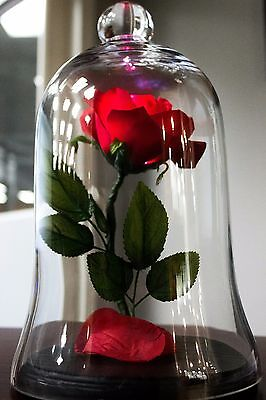 Enchanted Rose - Beauty and the Beast Rose Lamp