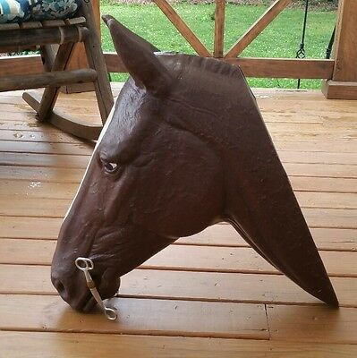 Life Size Molded Plastic Life Size Brown Horse Head for Bit Display Bridle Buddy