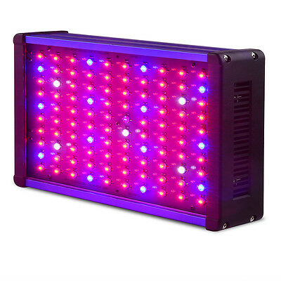 1000W Full Spectrum LED Grow Light for Medical Plants Veg and Bloom Indoor Plant
