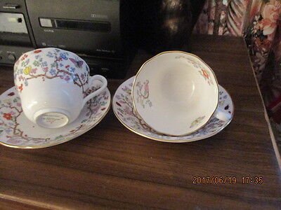 Spode Cups And Saucers