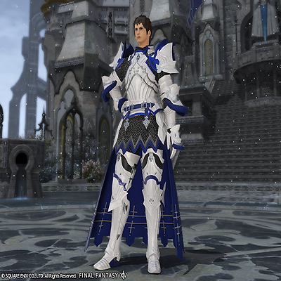 FINAL FANTASY XIV FFXIV FF14 Item Character Ward Knight's Attire Code not gil