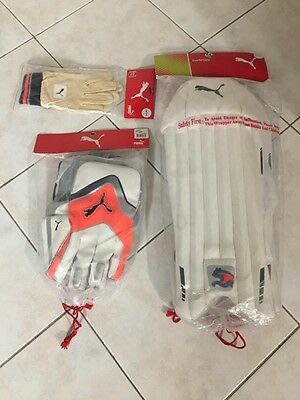 Cricket Wicket Keepers Gear