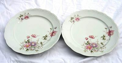 Mitterteich Bavaria Plates - Two - Unknown Pattern - Made in Germany, Very Nice!