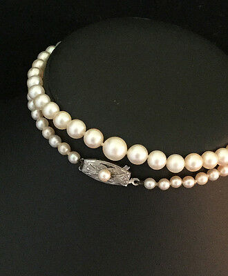 Art Deco Saltwater Cultured Akoya Pearl Necklace, Silver Pearl Clasp  Lgth 18.5""