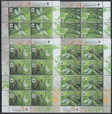 XG-AM038 BELARUS - Wwf, 2010 Insects, Nature, Snaketail 4 Sheets MNH