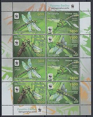 XG-AM039 BELARUS - Wwf, 2010 Insects, Nature, Green Snaketail MNH Sheet