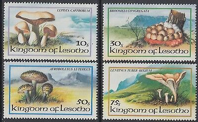 XG-AN887 LESOTHO - Mushrooms, 1983 Nature, 4 Values MNH Set