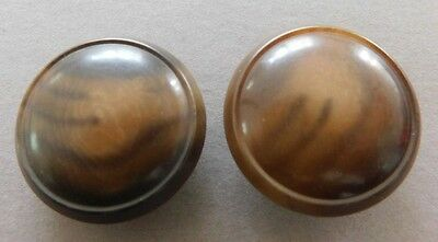 """Unusual Pair Antique Domed Vegetable Ivory Buttons 1"""" 4-Way Box Shank"""