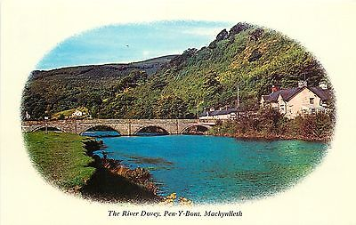 s08928 Pen-y-Bont, Machynlleth, Montgomeryshire, Wales postcard unposted