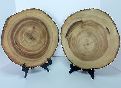 "LOT OF 2 Live Edge Black Walnut Slabs Slice Tree Trunk 13-14"" x 13"" Rustic Wood"
