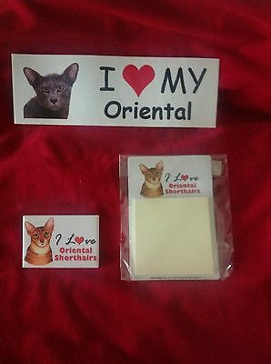 Oriental Shorthair  Cat Collectibles