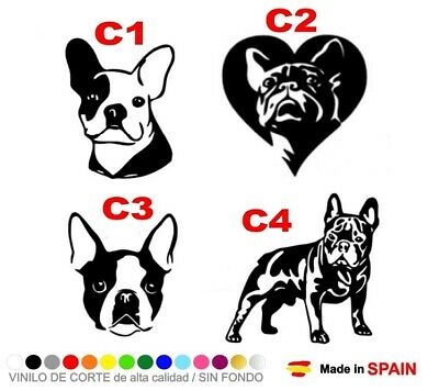 Pegatina Vinilo Bulldog Frances Perro Pared French Dog Sticker Wall Car Decal