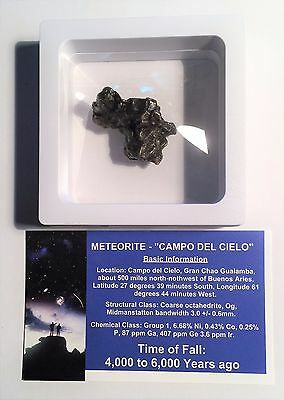 """""""RARE"""" 23.6 Gram Meteorite """"Campo Del Cielo"""" Museum Quality with stand and Cert"""