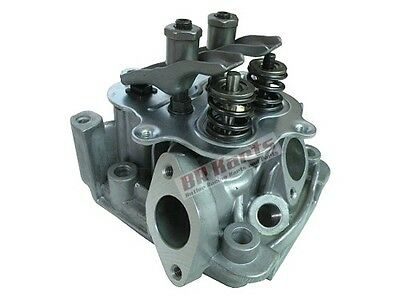 555635 Cylinder Head, Briggs and Stratton, Animal, LO206 (NEW)
