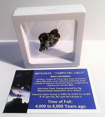 """""""RARE"""" 20.7 Gram Meteorite """"Campo Del Cielo"""" Museum Quality with stand and Cert"""