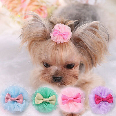 Cute Tulle Pet Dog Yorkie Hair Bows Accessories Hair Clips Grooming