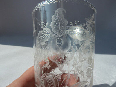 Antique Etched Crystal Beaker, Not Signed Stevens and Williams? Collectors Glass