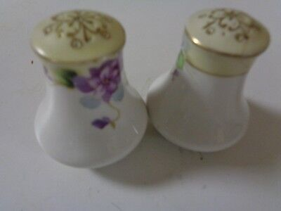 hand painted floral salt and pepper shakers made in Japan