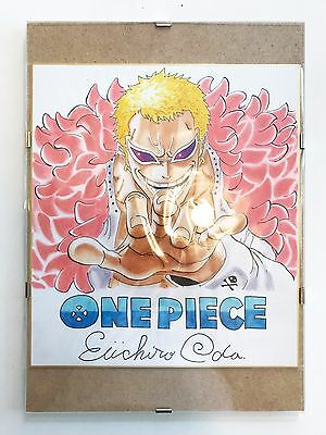 EIICHIRO ODA Hand Signed DOFLAMINGO Drawing + Glass Frame ONE PIECE - EXCLUSIVE