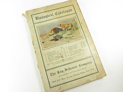 1920's? Biological Catalogue Kay-Scheerer Company New York 240 Pages