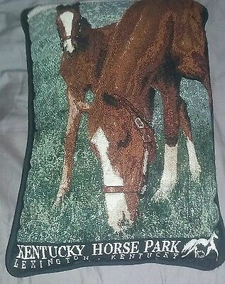 Horse Pillow Kentucky