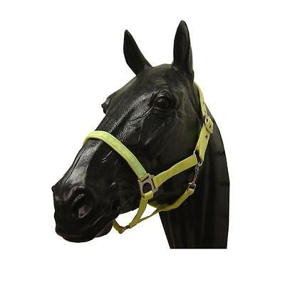 ProTack Headcollar Halter - Cob Pony - BULK BUY JOB LOT X 10 - RRP £7.99 each!