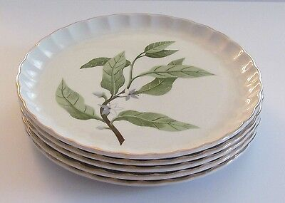 W. S. George Bolero Orange Blossom Five (5) Luncheon Plates Vintage Usa 1950'S