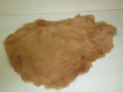 Rabbit skin pelt dyed tan colour size variable