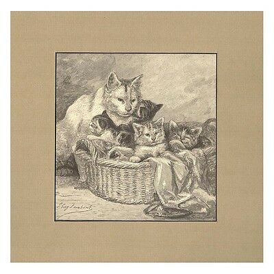 Maternity by Louis Eugene Lambert 1884 Engraving of Cats Print Matted
