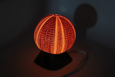 "Sea Urchin Lamp 4 1/2""-5"" with U.L. approved cord and bulb"
