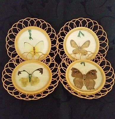 Butterfly Moth Wing Bamboo Coasters Vtg 1970 Barware Tea Service