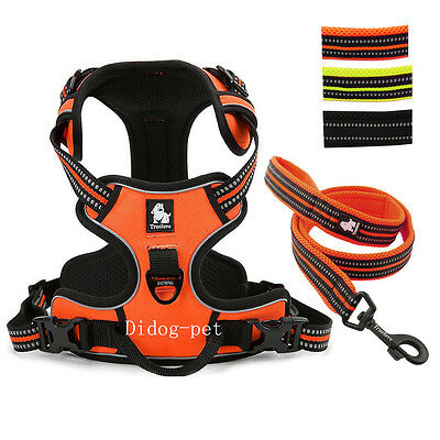 Reflective Mesh Padded Stop Pulling Dog Harness and Leash Set for Dogs XS S L XL