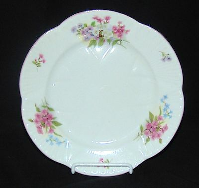 "Shelley STOCKS *8"" SALAD PLATE*"