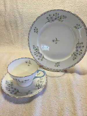 Fine Bone China Shelley England Cup And Saucer Salad Plate Blue Rock
