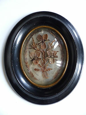 """SUPERB ANTIQUE FRENCH SENTIMENTAL MOURNING HAIR ART c.1880's . 7 1/10 """""""