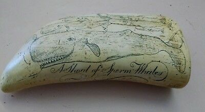 Scrimshaw Replica Resin Sperm Whale Tooth shoal of whales artek ms anchor logo