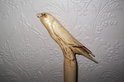 Hand Carved Walking Stick Staff with Bird of Prey Handle
