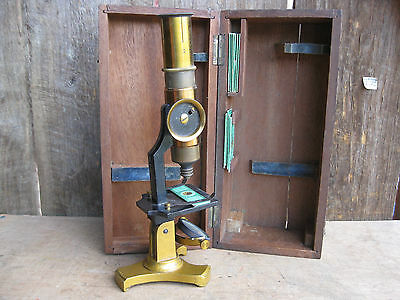 Exceptional Antique Brass Microscope with Vintage Prepared Slides & Wooden Case