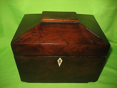 Antique  Sarcophagus Tea Caddy Wood Box