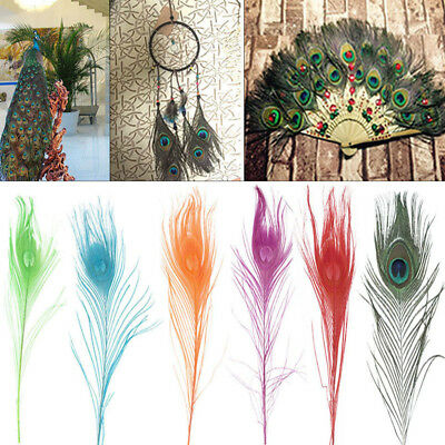 Colorful Peacock Feathers Craft Xmas Wedding Party Decorations 25~30CM 10/20/30