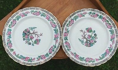 """Tuscan China Pair 7 7/8"""" Luncheon Plates Early 1900's """"Indian Tree"""" Pattern"""