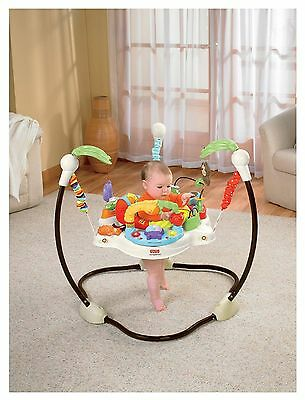Fisher Price Baby Swing Seat Bouncer and Walker Cradle Set