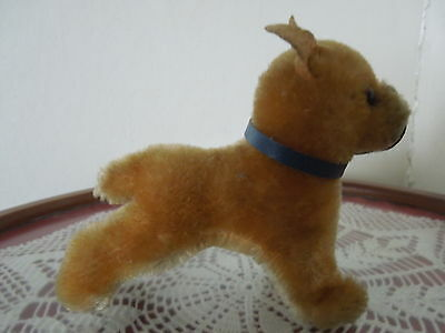 "Steiff ~Sarras the Boxer ~Bull Dog~ 4 1/4"" ~blue collar"