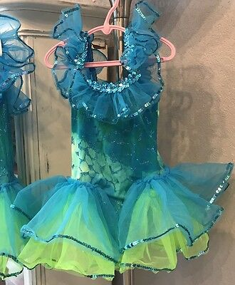 Lot of 3 Dance Costumes High End Child Sizes 4-7 Princess Anna/Fish & Barbie WOW