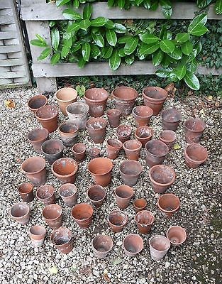 Collection of Vintage and Old Clay Terracotta Pots