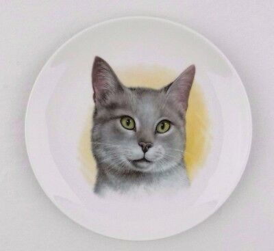 Gray Cat Collector Plate E&R Golden Crown Bavaria Germany Schumann Arzberg