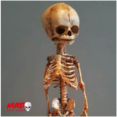Deluxe Foetal Skeleton Fetal Baby Horror Figure Halloween Decoration Creepy Doll